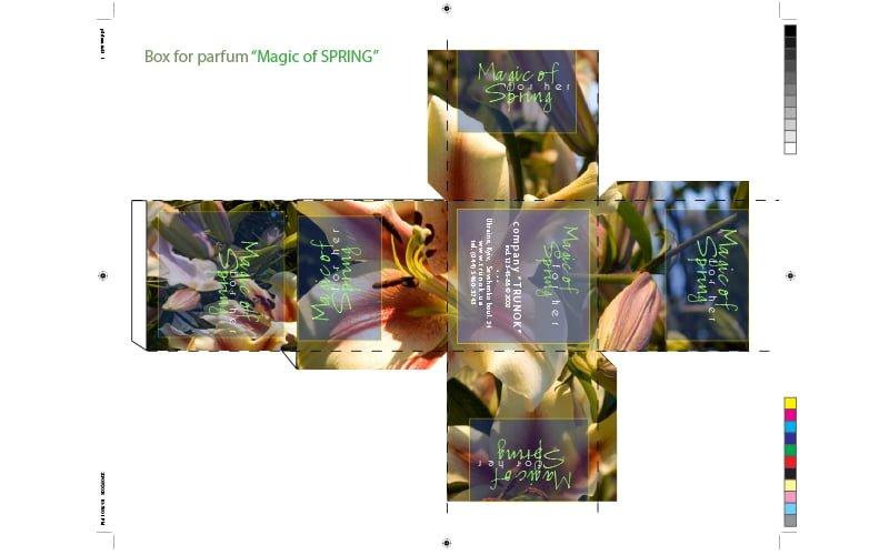 Art-Step Design Studio - Packaging Design - Perfume Box